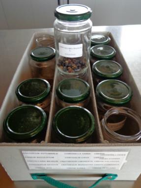 laboratorio botanico4