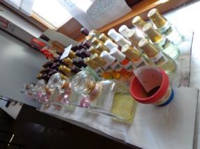 laboratorio botanico6