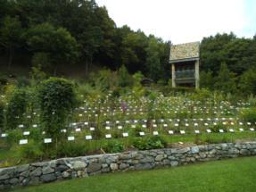 orto botanico1